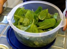 VIDEO Quick Spinach Recipe - Tasty 60-Second Spicy Salad